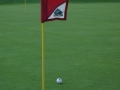 flag-diagonal-practice-trappers-turn-1